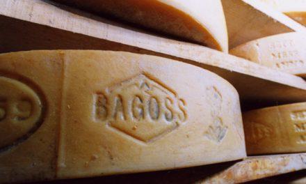 Il Bagòss